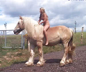 Category: horse riding bitches